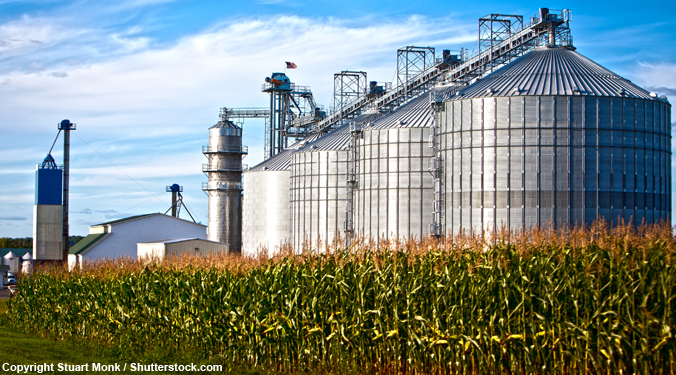 Five awesome things you won't believe run on biofuel